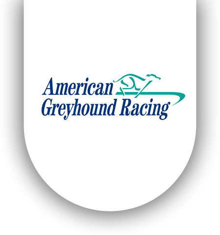 American Greyhound Racing